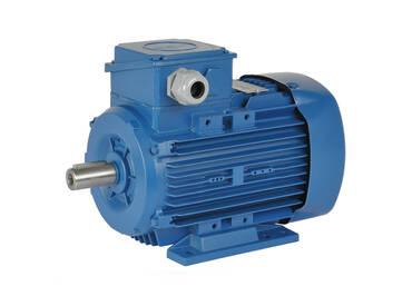 Elektromotor 55 kW 3000 rpm