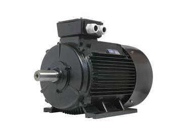 Elektromotor 55 kW 1500 rpm IE3